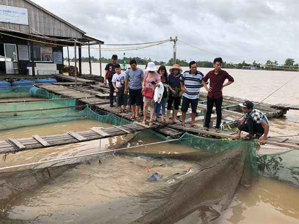 Visitors at a fish farm on Son Islet in Can Tho City in the Mekong Delta